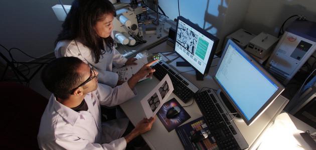 معايير الجودة في البحث العلمي
