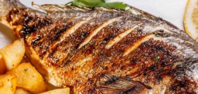 فوائد السمك الزبيدي