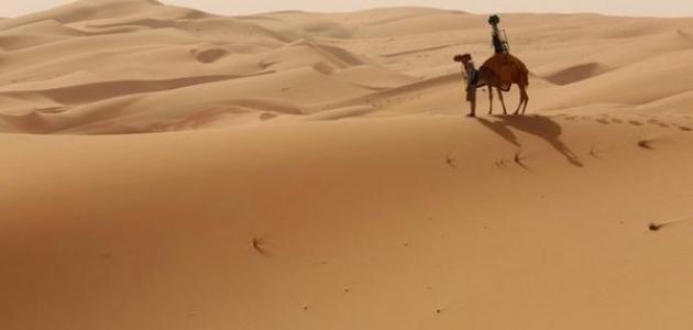 مظاهر السطح في دولة الإمارات