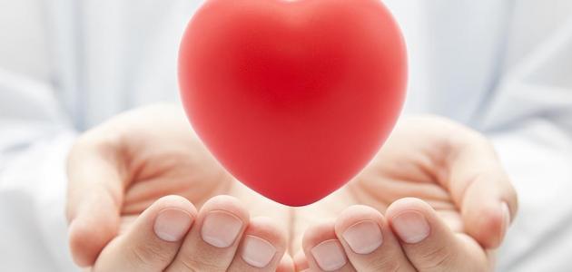 كيف تمارس الحب