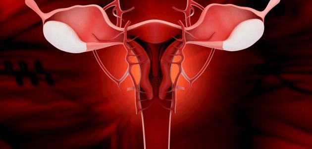ما أنواع إفرازات الحمل