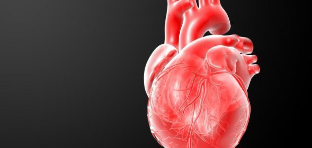 ما سبب انقباض القلب