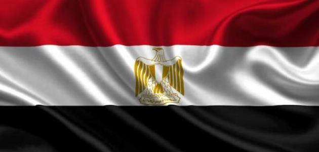 تعبير عن حب مصر والانتماء لها