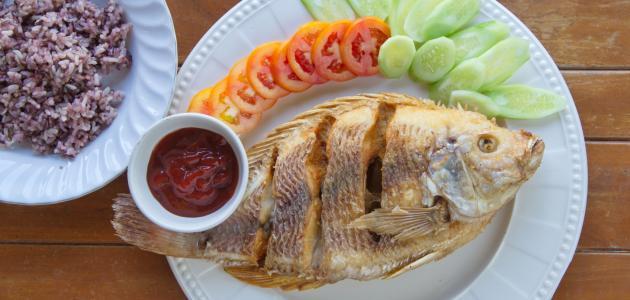 طرق جديدة لعمل السمك البلطي