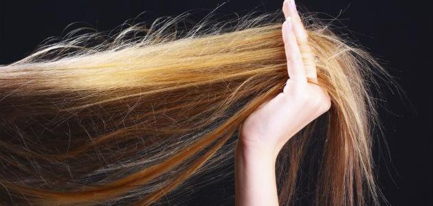 طريقة التخلص من تقصف الشعر