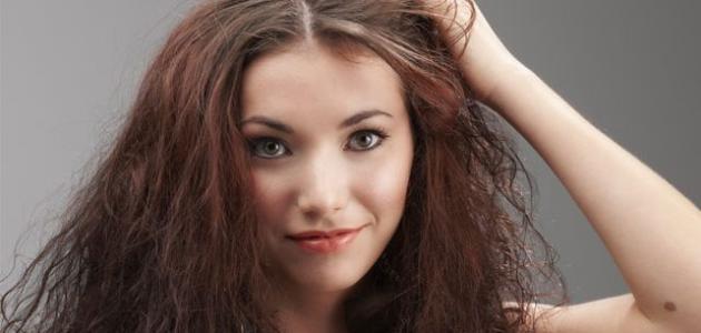 طرق تغذية الشعر الجاف