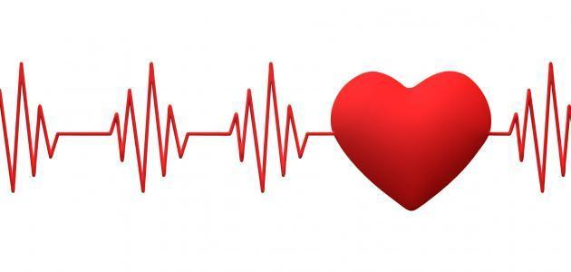 ضربات القلب الطبيعية عند الإنسان