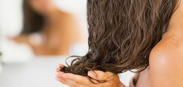 خصائص الشعر الدهني