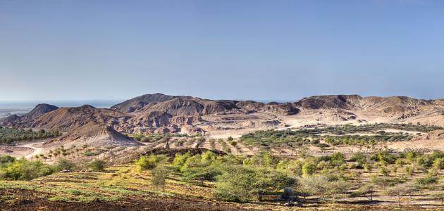 جزيرة صير بني ياس أبو ظبي