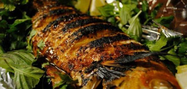 طرق عمل السمك السنجاري