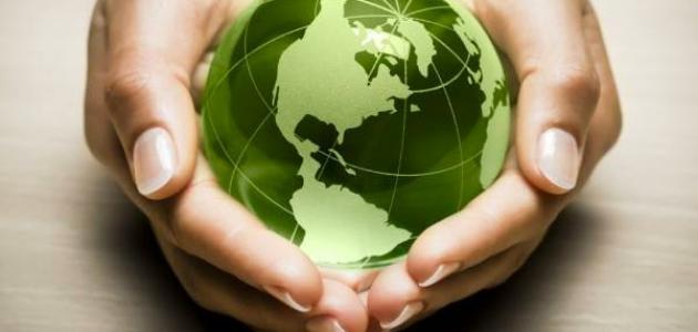 طرق الحماية من التلوث