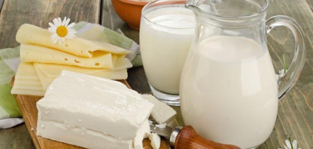 صنع اللبن من حليب البقر