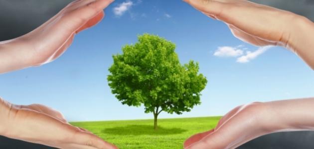 طرق وقائية من تلوث البيئة