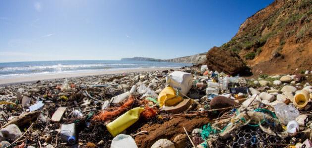 مظاهر التلوث في المحيط