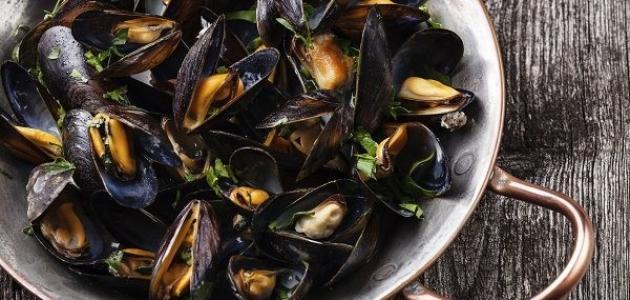 طريقة طبخ صدف البحر