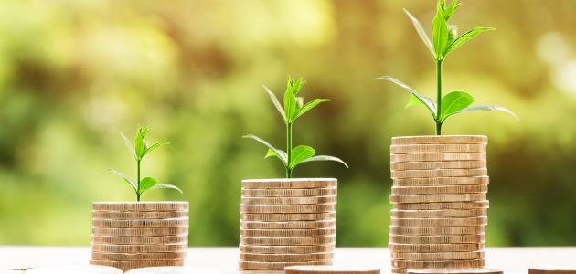 طريقة استثمار مبلغ صغير