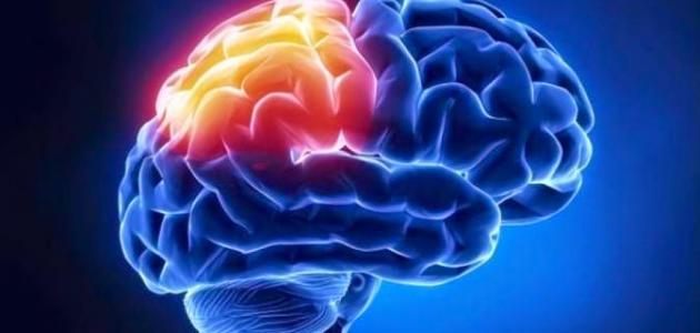 الأورام السحائية الدماغية - فيديو