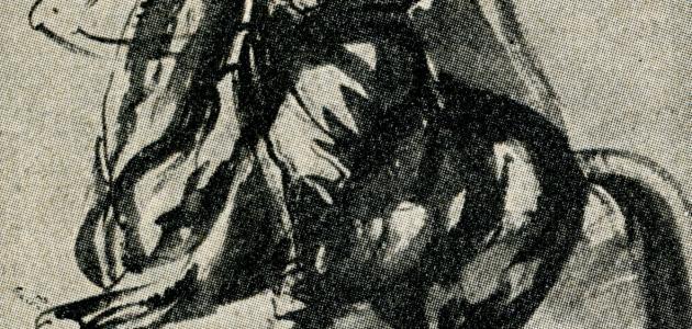 طارق زياد