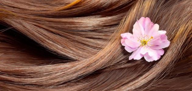 طريقة صبغ شعر بالبني الفاتح