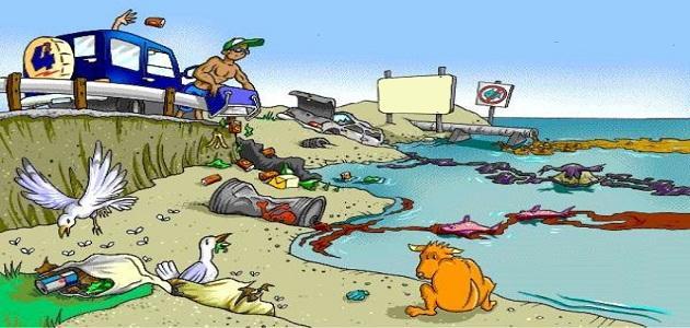 ما هي مصادر تلوث الماء