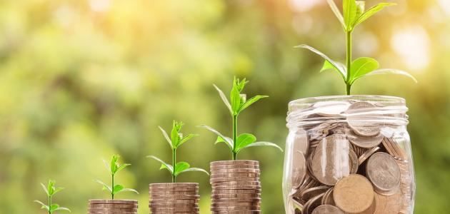 طرق استثمار مبلغ صغير من المال