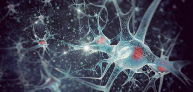 أعراض الاستسقاء الدماغي - فيديو