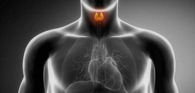 تشخيص وعلاج فرط نشاط الغدة الدرقية - فيديو