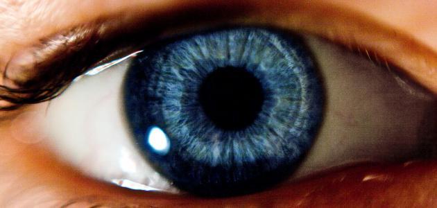 مشاكل الرؤية عند الإنسان