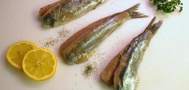طريقة تخليل سمك السردين