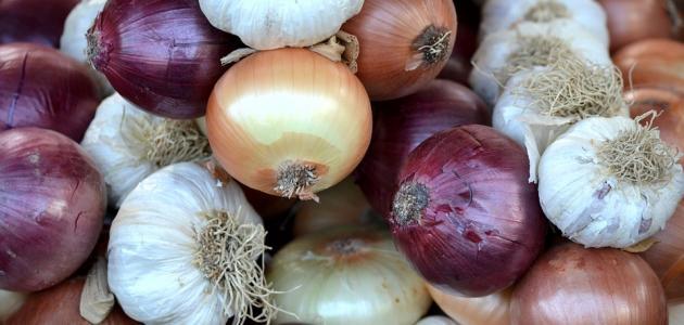 فوائد البصل والثوم للقلب