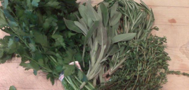 فوائد الأعشاب الطبية