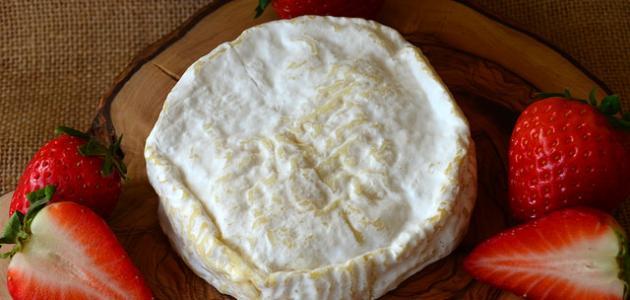 طريقة عمل الجبنة للكنافة
