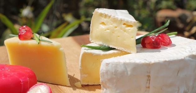 فوائد الجبن وأضراره