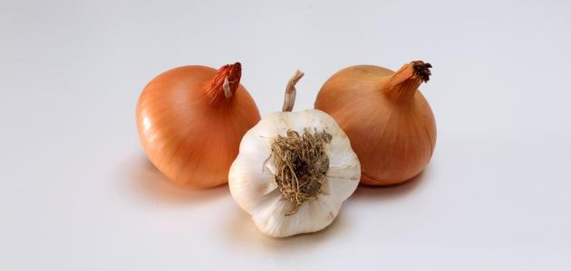 فوائد البصل والثوم للحامل