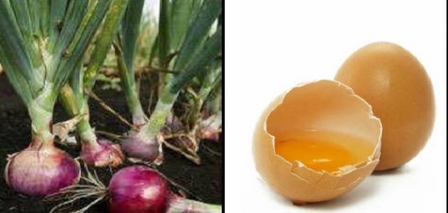 فوائد البيض والبصل