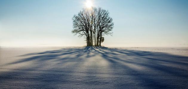 سبعة يظلهم الله في ظله يوم لا ظل إلا ظله موضوع