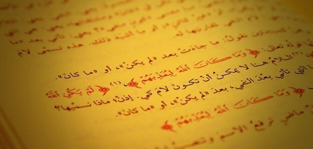 فوائد تعلم اللغة العربية