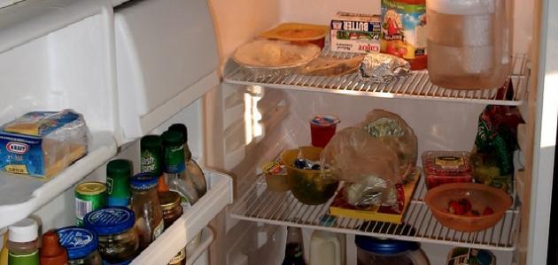 طريقة للحفاظ على الثلاجة عند السفر