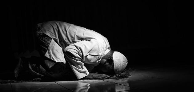 كيف نصلي صلاة الشفع والوتر