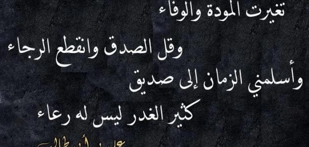 حكم علي بن ابي طالب