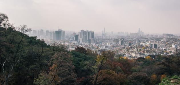 معلومات عن دولة كوريا