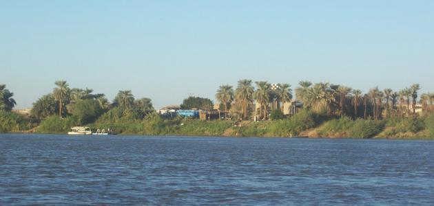 مدينة أبو حمد