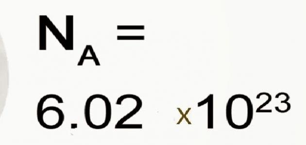تعريف عدد أفوجادرو