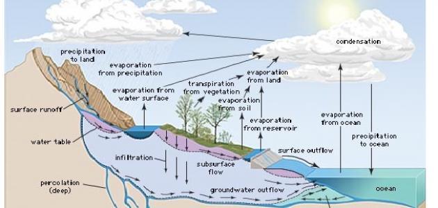 وصف ظاهرة دورة الماء في الطبيعة