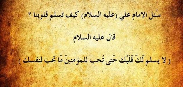 حكمة علي بن ابي طالب