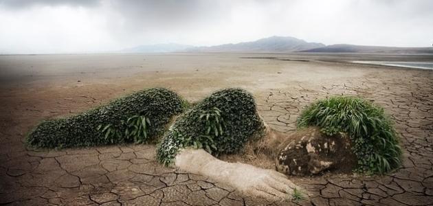 مظاهر تلوث التربة