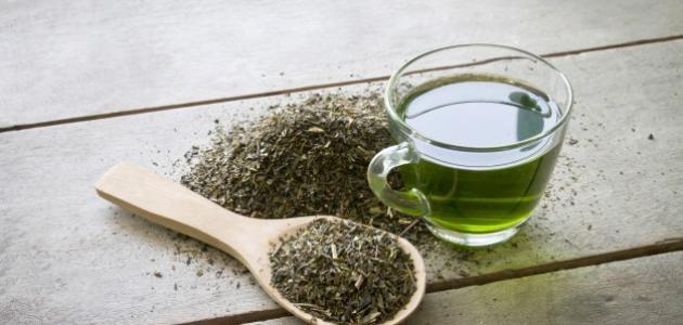 فوائد الشاي الأخضر المر