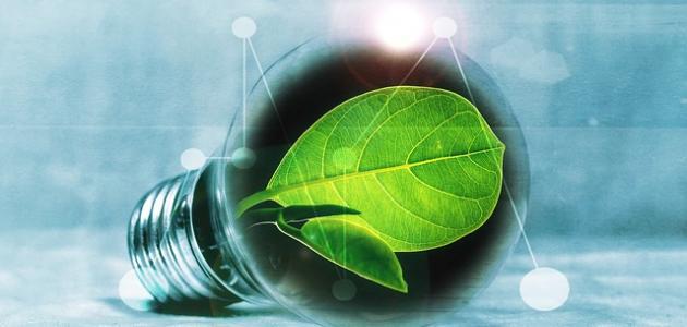 طرق للحفاظ على البيئة