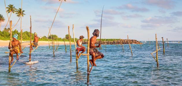مدينة قحطان في سريلانكا