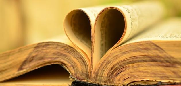 ما هي صفات الحب العذري